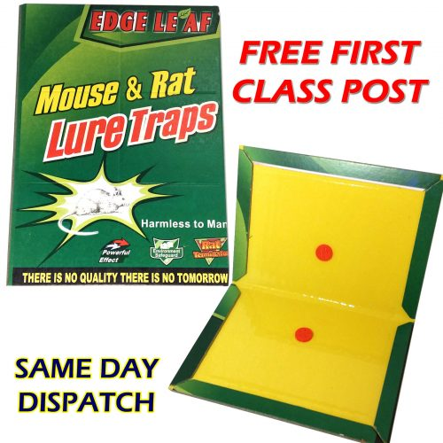 Large Rat / Mouse / Rodent Glue Trap Board